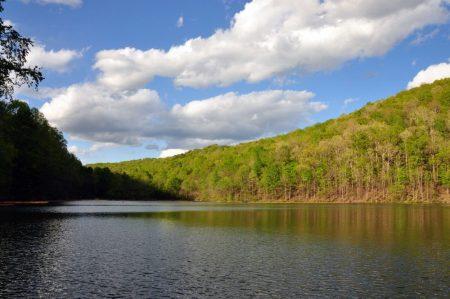 Roaring River 049