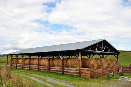 Toler-Farm13