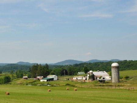 Shiflet Farm Tour 007
