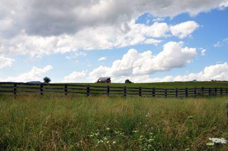 Shiflet Farm Tour 014