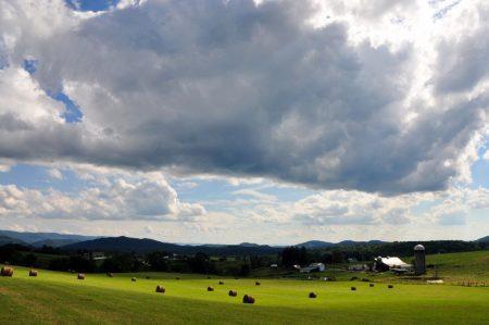 Shiflet Farm Tour 017