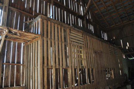 Shiflet Farm Tour 019