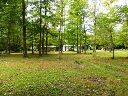 Lou's Retreat at Moncove Lake 026