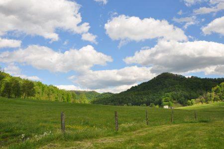 Green Fields Farm 003