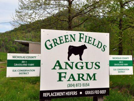 Green Fields Farm 004