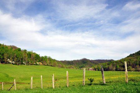 Green Fields Farm 010