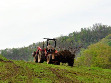 Green Fields Farm 019
