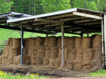 Green Fields Farm 034