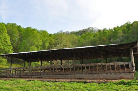 Green Fields Farm 035