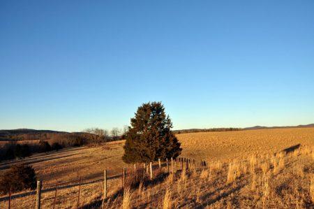 Hutchens Farm Tour 003