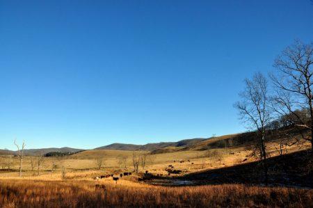 Hutchens Farm Tour 004