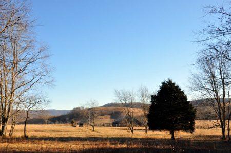 Hutchens Farm Tour 009
