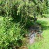 Little Wolf Creek Farm 007