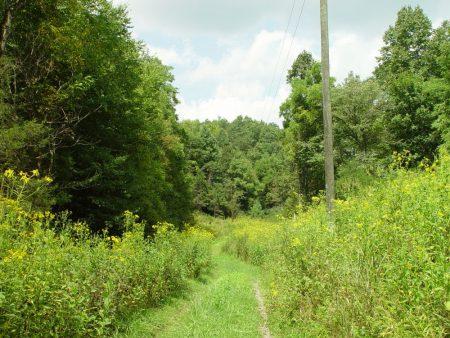 Little Wolf Creek Farm 018