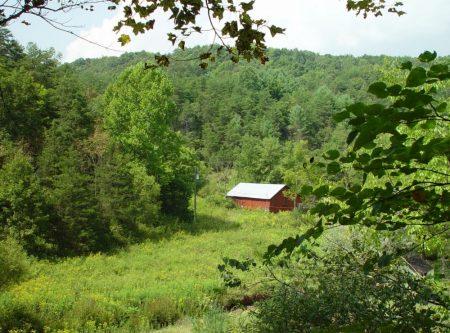 Little Wolf Creek Farm 019