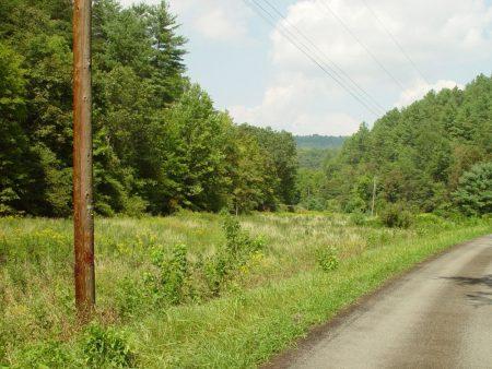 Little Wolf Creek Farm 021
