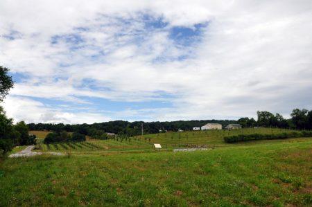 Napallachian Farm 013
