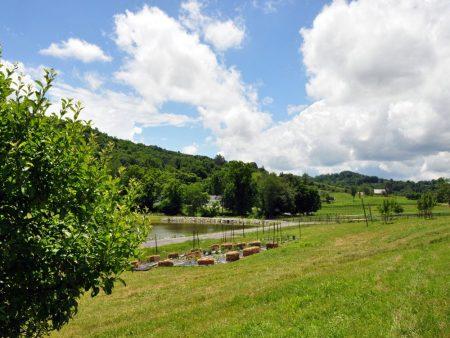 Napallachian Farm 046