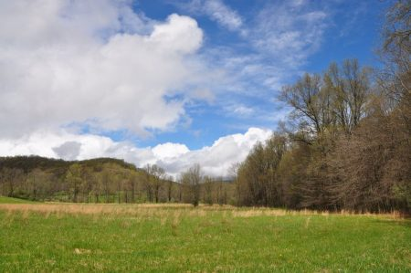 Otter Creek Farm and Forest Tour 015