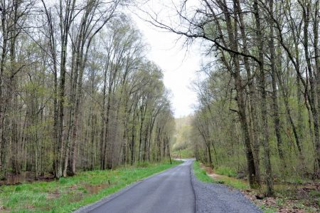 Otter Creek Farm and Forest Tour 022