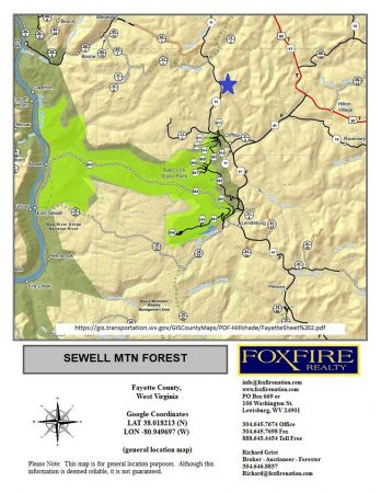Sewell Mountain Forest 022