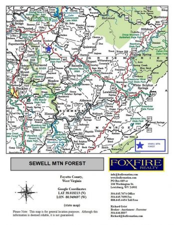 Sewell Mountain Forest 025