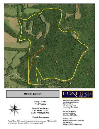 Moss Rock 003