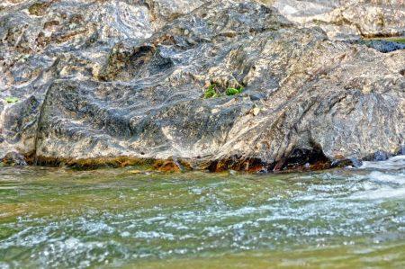 Moss Rock 023