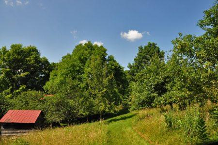 9 Springs Farm 019