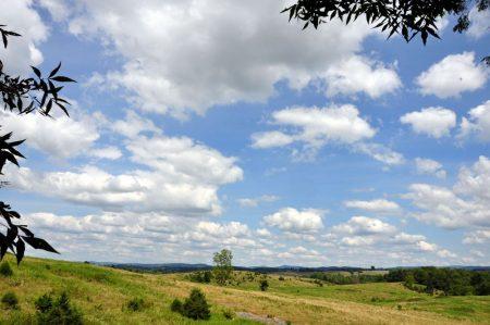 Bud Ridge Farm 001