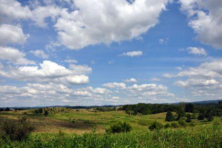 Bud Ridge Farm 011