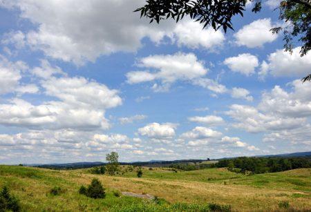 Bud Ridge Farm 017