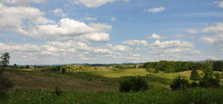 Bud Ridge Farm 021
