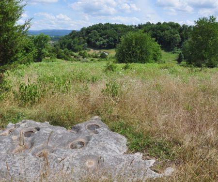 Bud Ridge Farm 022