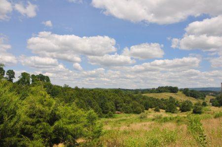 Bud Ridge Farm 025