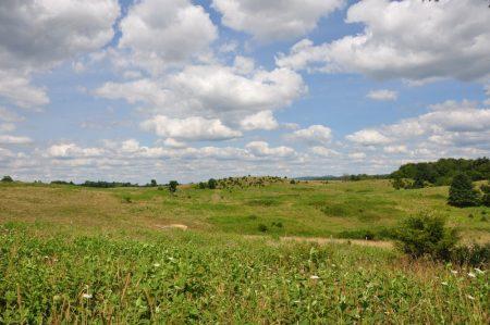 Bud Ridge Farm 027