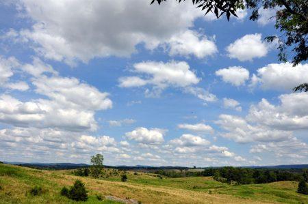 Bud Ridge Farm 029