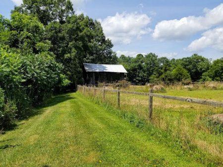 Meador Berry Farm 021