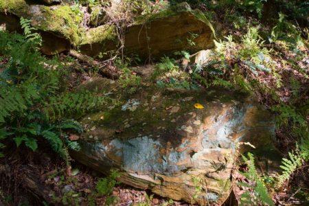 Hemlock Falls 035